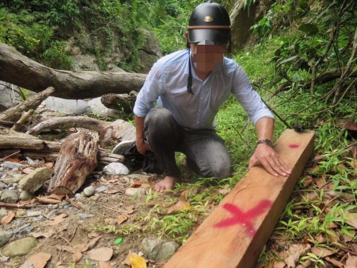 Tàn phá rừng, 3 người ở Quảng Ngãi bị phạt gần 240 triệu đồng