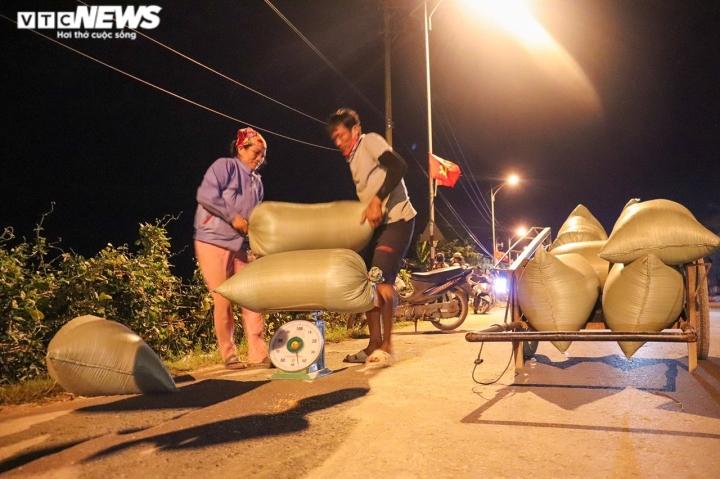 Ảnh: Tránh nắng 'như thiêu như đốt', nông dân Quảng Bình gặt lúa xuyên đêm - 7