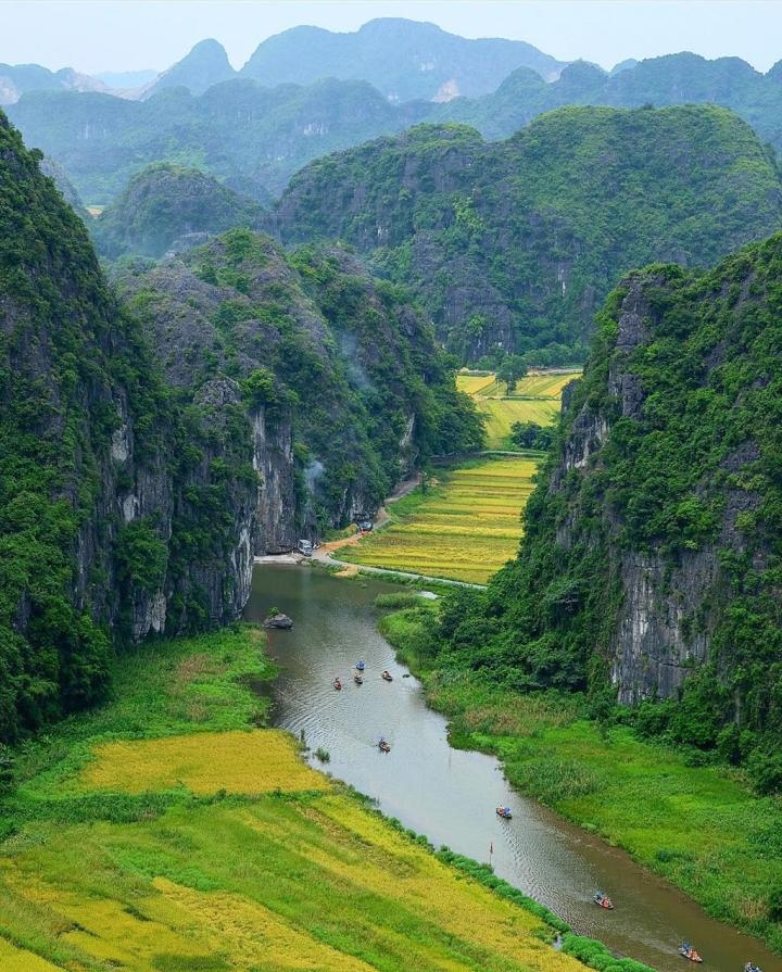 Mơ màng giữa sắc vàng thơ mộng của cánh đồng 'đẹp nhất Việt Nam' mùa lúa chín  - 3