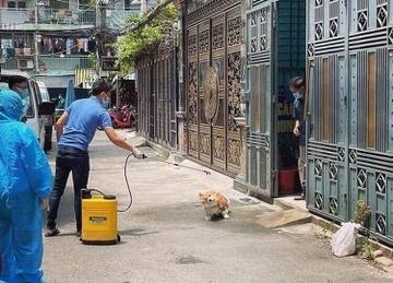 Chú chó được phun khử khuẩn ở Gò Vấp bỗng nổi tiếng trên mạng - 2