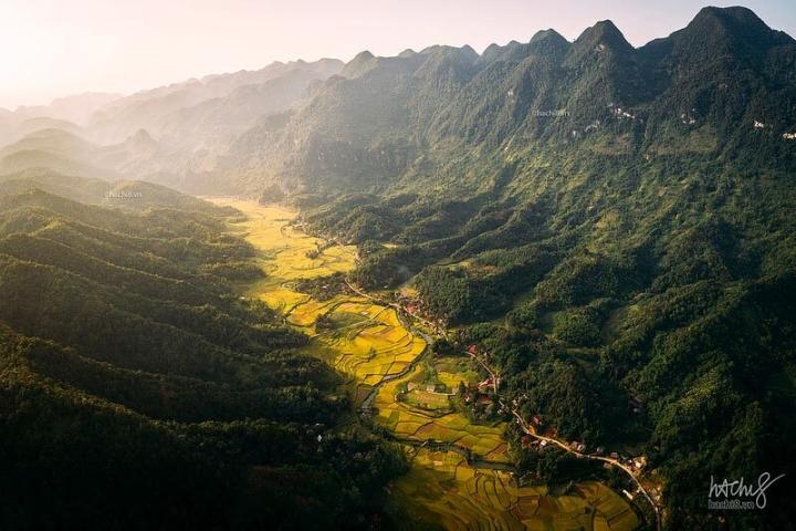 Tìm về chốn bình yên ở Thanh Hóa, mùa lúa chín ngả màu như 'biển vàng' - 1