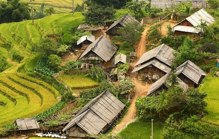 Tìm về chốn bình yên ở Thanh Hóa, mùa lúa chín ngả màu như 'biển vàng' - 5