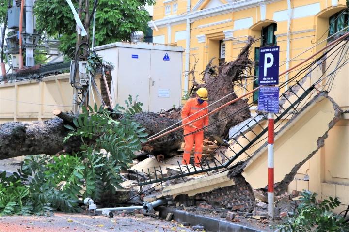 Hà Nội: Gió lớn thổi bật gốc cây cổ thụ, đè sập tường TAND tối cao