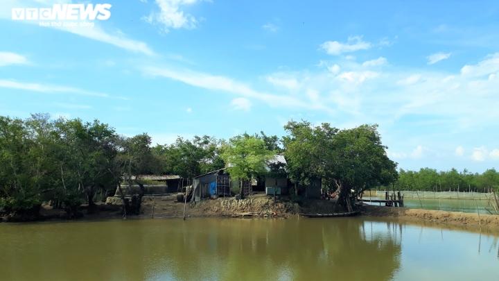 Ảnh: Vẻ đẹp hút hồn rừng ngập mặn duy nhất trên vùng đầm phá lớn nhất Đông Nam Á - 5