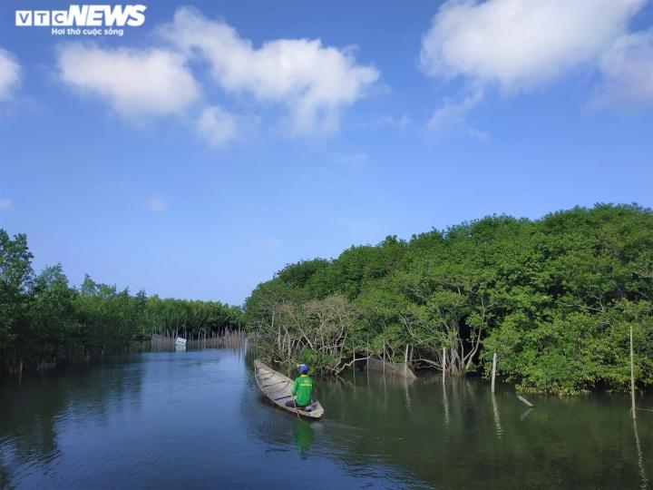 Ảnh: Vẻ đẹp hút hồn rừng ngập mặn duy nhất trên vùng đầm phá lớn nhất Đông Nam Á - 9