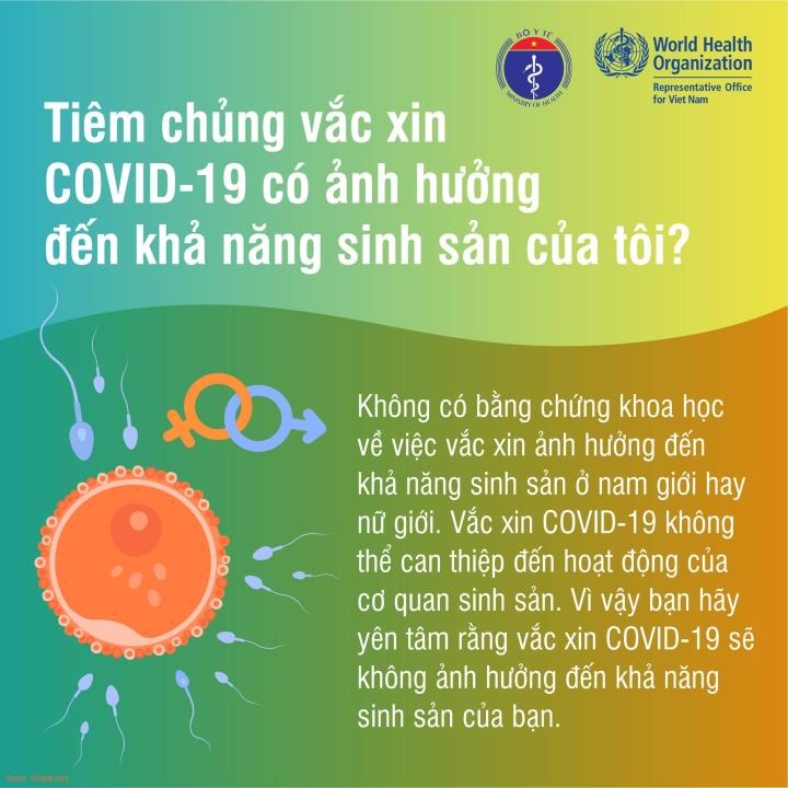 Phụ nữ mang thai có thể tiêm vaccine COVID-19? - 3