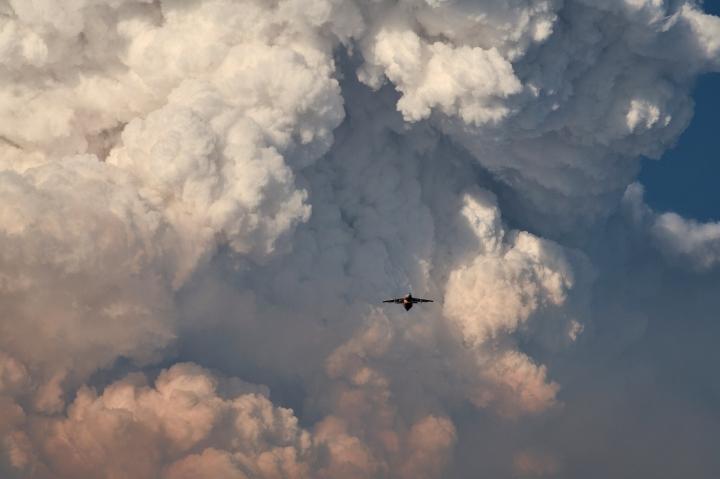 Ảnh: Hiện tượng thời tiết quái dị do cháy rừng ở Mỹ - 3