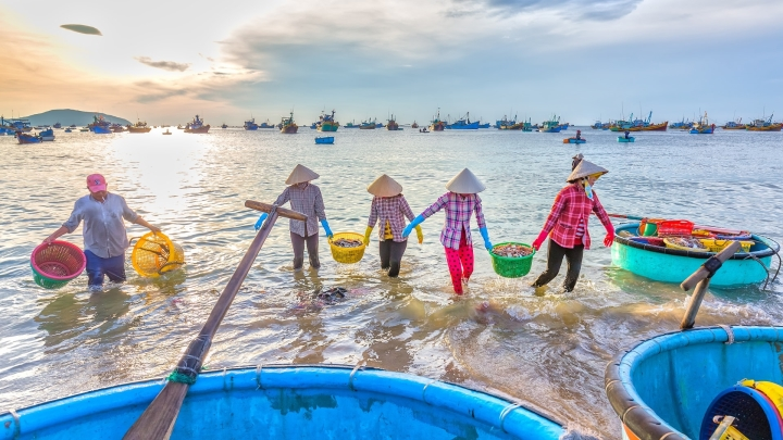 Có một làng chài đẹp mê ly với những chiếc thuyền thúng đầy màu sắc ở Bình Thuận - 2