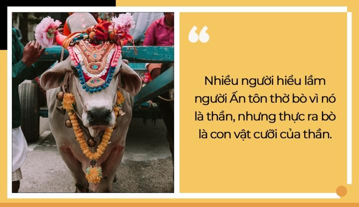 Nhiều người nghĩ Ấn Độ tôn thờ bò vì chúng là thần, nhưng sự thật không phải vậy - 5