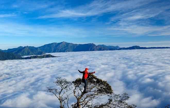 Ngắm biển mây tựa tiên cảnh ở Tà Xùa - điểm check-in hàng đầu của giới trẻ - 1