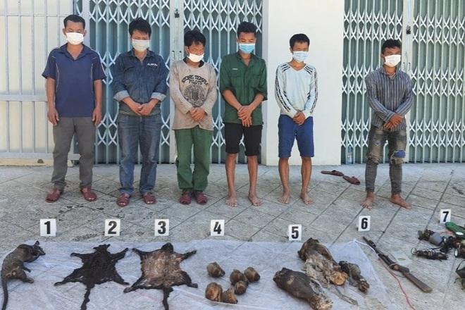 6 linh trưởng nghi là voọc chà vá chân nâu bị giết hại ở Vườn Quốc gia Bạch Mã  - 1
