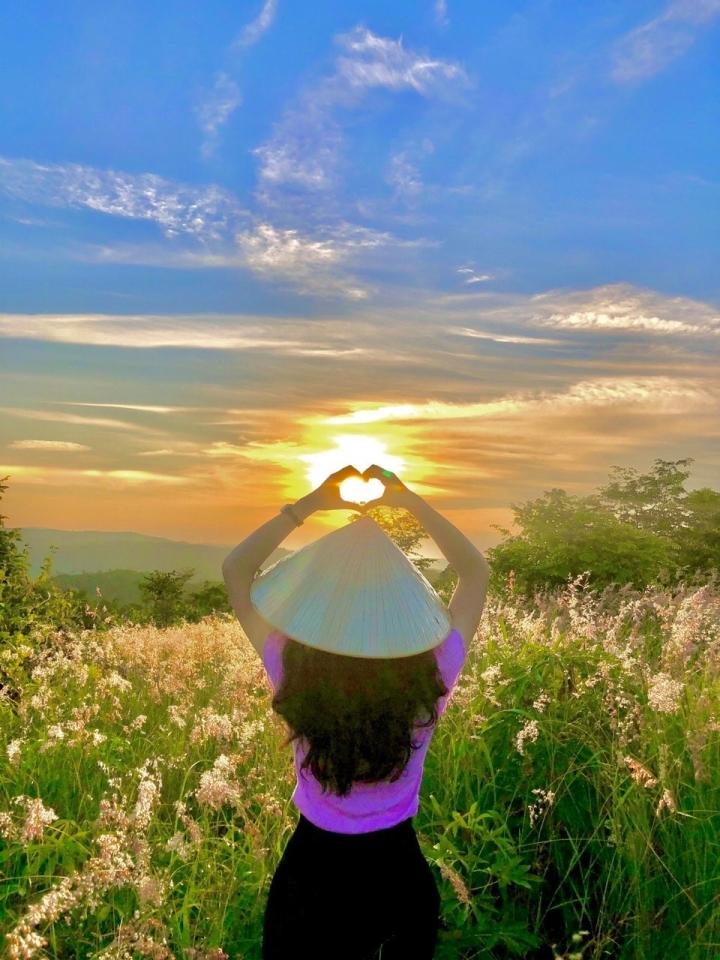 Đồi cỏ hồng đẹp mơ màng nằm giữa núi rừng Gia Lai hút hồn du khách - 7