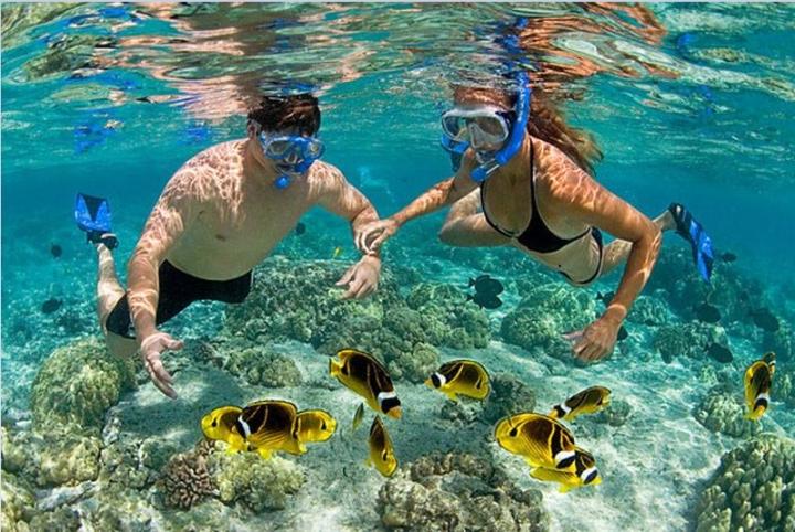 Vắng bóng du khách, Nam đảo Ngọc vẫn đẹp đến nao lòng - 8