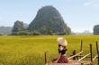 Sen nở rộ, lúa trải vàng ở 'thánh địa check-in' đẹp nhất Ninh Bình