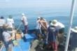Khai thác du lịch quá mức, tận diệt hải sản đe dọa khu bảo tồn biển Việt Nam