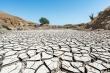 Miền Tây nước Mỹ đối mặt đợt hạn hán nghiêm trọng nhất trong hơn 1.000 năm