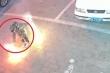 Clip: Bé trai đốt pháo ném xuống hố ga và cái kết khủng khiếp