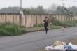 Clip: Chàng trai chạy tóe khói vì trêu chó