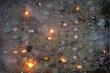 Video: Cảnh tượng ám ảnh trong những nhà hỏa táng chật kín chỗ ở Ấn Độ