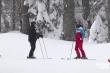 Video: Tổng thống Putin trượt tuyết, lái môtô cùng Tổng thống Belarus