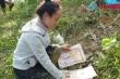 Phóng viên VTC News tường thuật từ hiện trường lở đất khủng khiếp ở Quảng Nam