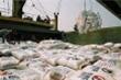 Bộ Công Thương bất ngờ đề nghị hoãn việc dừng xuất khẩu gạo