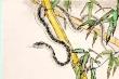 Tử vi 12 con giáp ngày 31/10: Tuổi Tỵ gặp rắc rối trong công việc, sếp la mắng