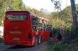 Đà Lạt: Xe khách lao xuống vực, hơn 20 hành khách thoát chết