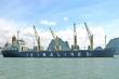 Nhiều doanh nghiệp vận tải biển lãi đậm, cổ phiếu tăng 'bốc đầu'