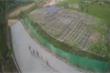 Clip: Đàn vịt để lại nghìn dấu chân trên đường bê tông mới đổ