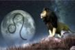 Tử vi ngày 24/7 của 12 cung hoàng đạo:  Sư Tử được sếp đánh giá cao