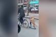 Clip: Chó đi xe trượt trên phố cực 'đỉnh'