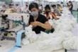 Việt Nam có thể tăng trưởng 4,8% trong năm nay