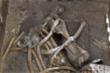 Tìm thấy bộ xương voi 300.000 năm tuổi, ngà dài gần 2,5 m