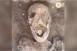 Xác ướp 2.000 năm tuổi với chiếc lưỡi vàng bí ẩn