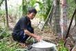 Hàng loạt giếng nước bốc mùi khét: Chủ tịch Quảng Ngãi nói gì?