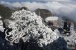 Miền Bắc rét đậm, vùng núi cao có băng giá và sương muối