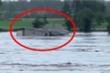 Ảnh, video: Lũ lụt kinh hoàng tại Australia, cả ngôi nhà bị cuốn trôi