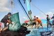 Trung Quốc thông báo tạm ngừng đánh cá trên Biển Đông: Tuyên bố không có giá trị