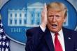 Phát ngôn 'gậy ông đập lưng ông' chống lại Trump trong phiên luận tội lần 2