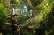 Biệt thự 20 tỷ đồng trong 'khu nhà giàu' của ca sĩ Quang Hà