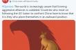 Trung Quốc tiếp tục đăng biếm họa 'đổ dầu vào lửa' giữa căng thẳng với Australia