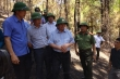 Trưởng Ban Tổ chức Trung ương Phạm Minh Chính thị sát khu vực cháy rừng ở Hà Tĩnh