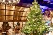 Có gì trên cây thông Noel đắt nhất thế giới hơn 300 tỷ đồng?