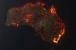 Trái Đất đang lâm vào kỳ giữa của kỳ đại tuyệt chủng thứ 6