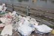 Kênh Tẻ TP.HCM ngập ngụa rác thải