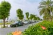 Mãn nhãn ngắm đoàn xe Vinfast 'chở' Vinhomes Star City dạo quanh Tp.Thanh Hóa