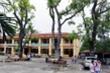 Trường học, bệnh viện tại Hà Nội muốn chặt, tỉa cây xanh phải làm đơn