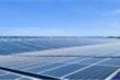 Thị trường điện mặt trời áp mái: Chọn chất hơn chọn rẻ!