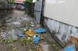 Gió bão cuốn bay am thờ đè người đàn ông ở Thừa Thiên - Huế trọng thương